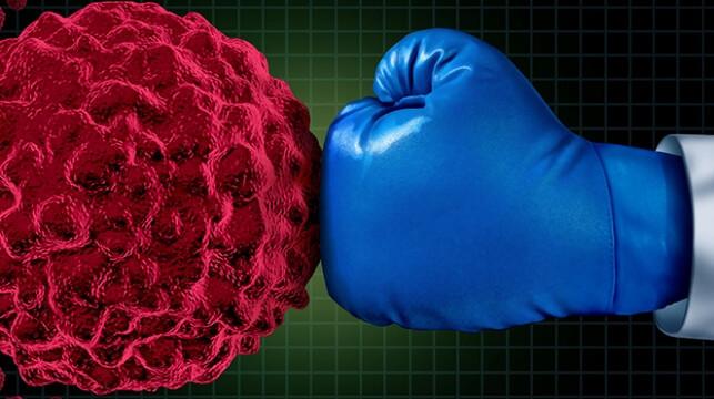 Sağlığımızın muhafızı Bağışıklık sistemi nasıl güçlendirilir?